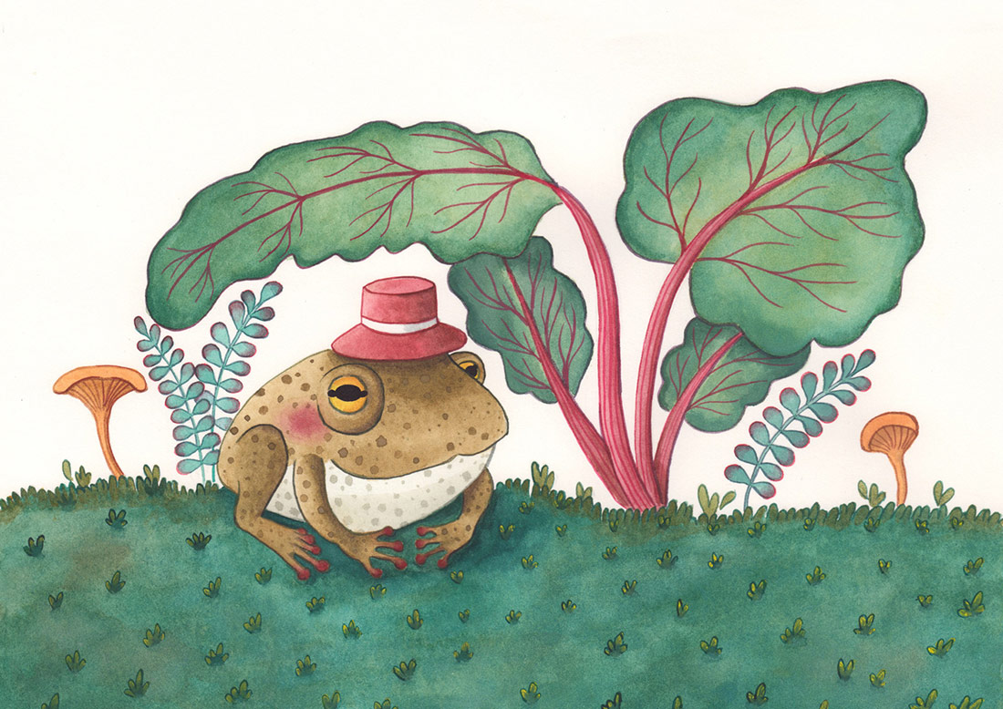 Illustrazione-Rospo-ARTERIE-LeonoraCamusso